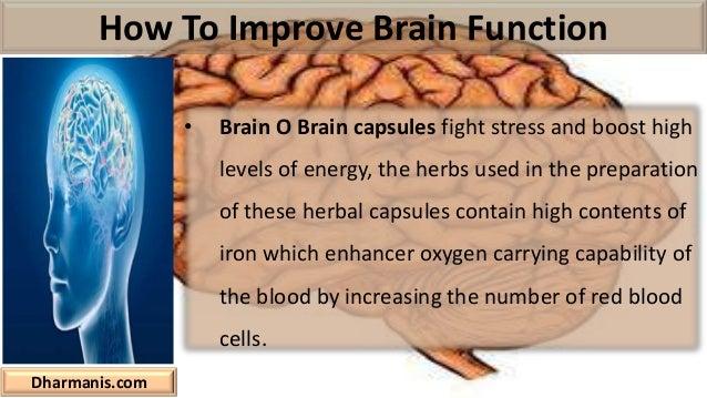 Keys to enhancing brain development image 5