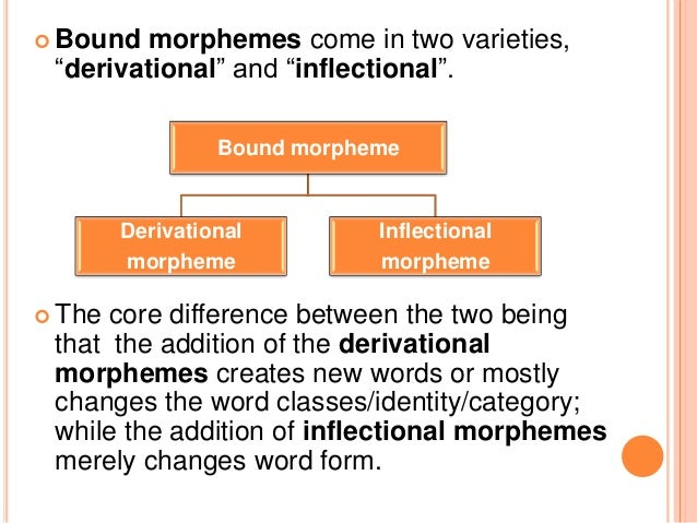 morphology affix and morphemes cranberry morphemes Cranberry morpheme in linguistic morphology, a cranberry morpheme (or  it  depends on another morpheme to express an idea, it is an affix because it has a .