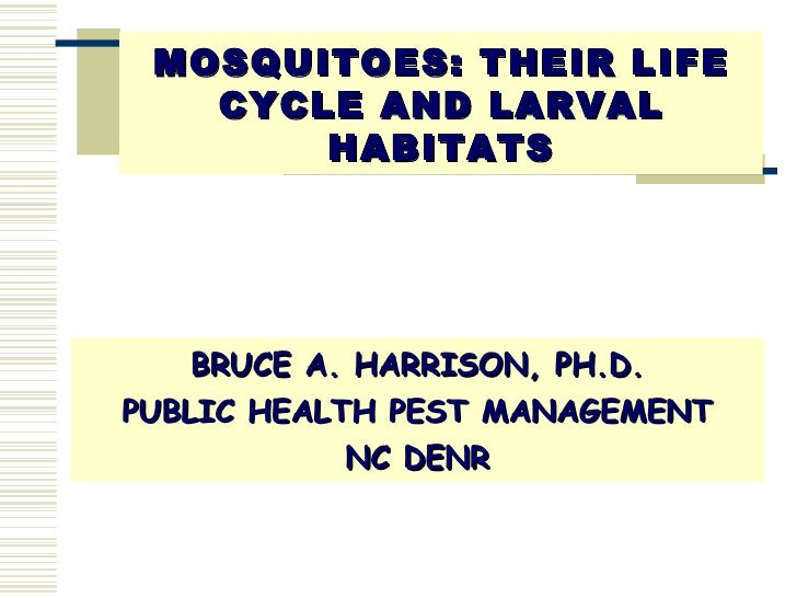MOSQUITOES: THEIR LIFE CYCLE AND LARVAL HABITATS <ul><li>BRUCE A. HARRISON, PH.D. </li></ul><ul><li>PUBLIC HEALTH PEST MAN...