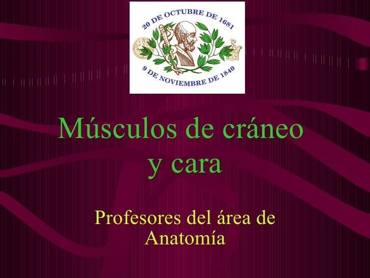 Músculos de cráneo  y cara Profesores del área de Anatomía
