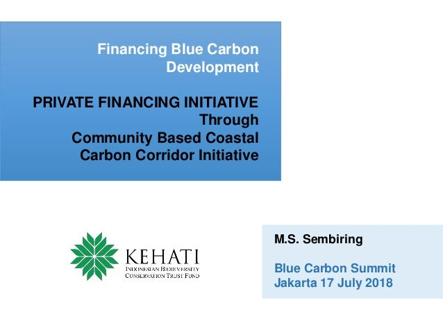 Financing Blue Carbon Development PRIVATE FINANCING INITIATIVE Through Community Based Coastal Carbon Corridor Initiative ...