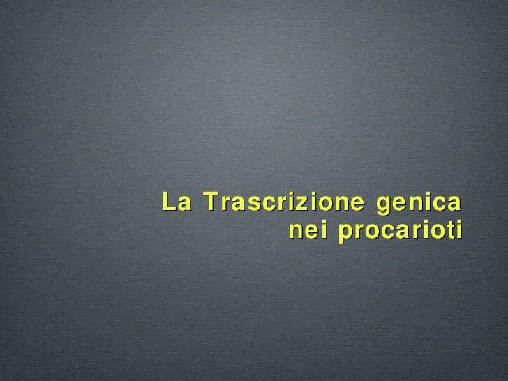 <ul><li>La Trascrizione genica nei procarioti </li></ul>