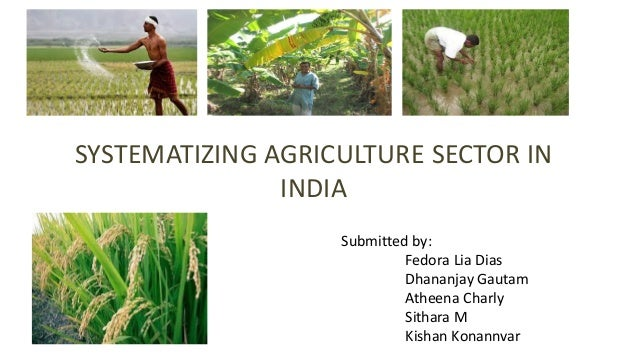 SYSTEMATIZING AGRICULTURE SECTOR IN INDIA Submitted by: Fedora Lia Dias Dhananjay Gautam Atheena Charly Sithara M Kishan K...