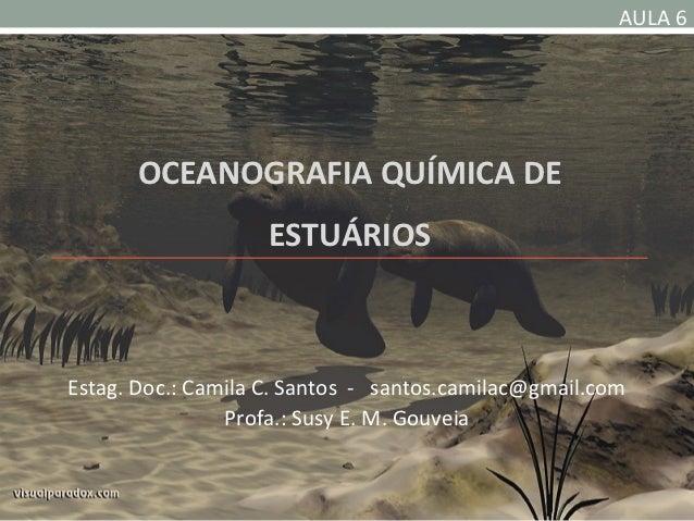 AULA 6       OCEANOGRAFIA QUÍMICA DE                    ESTUÁRIOSEstag. Doc.: Camila C. Santos - santos.camilac@gmail.com ...
