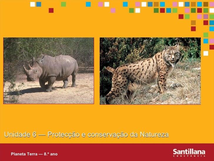 Unidade 6 — Protecç ão e conservação da Natureza Planeta Terra — 8.º ano