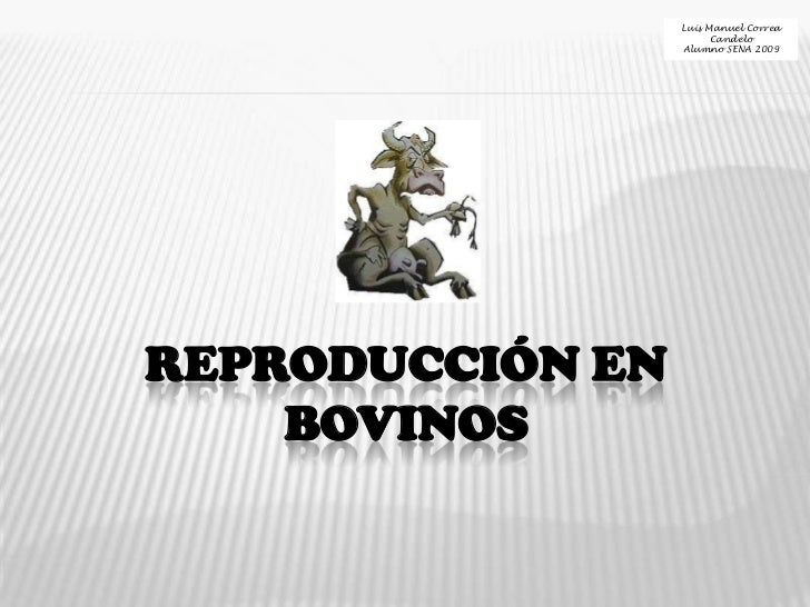 Luis Manuel Correa Candelo<br />Alumno SENA 2009<br />REPRODUCCIÓN EN BOVINOS<br />
