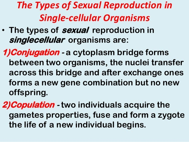 Two Types Of Sexual Reproduction