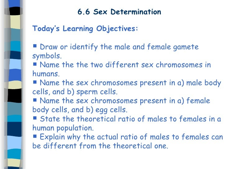 6 Sex Cells Fertilisation
