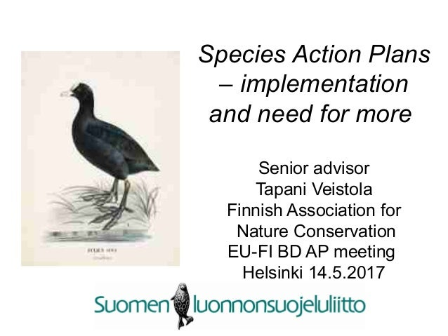 Species Action Plans – implementation and need for more Senior advisor Tapani Veistola Finnish Association for Nature Cons...