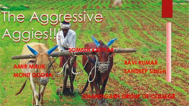 The Aggressive Aggies!!! • AMIR MALIK • MOHIT DOGRA • SOMESH KATIYAR • RAVI KUMAR • SANDEEP SINGH CHANDIGARH GROUP OF COLL...