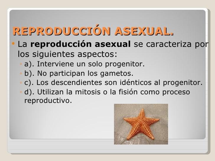 Diferentes tipos de reproduccion asexual