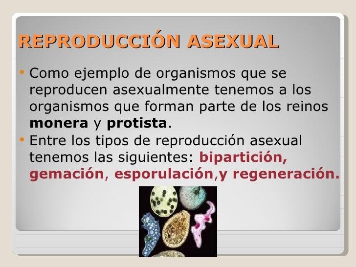 tipos de reproducción 1