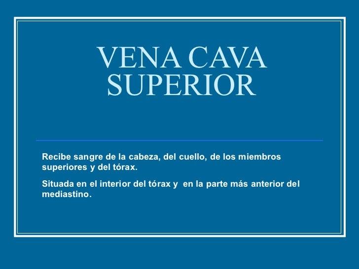 6. Vena Cava Superior