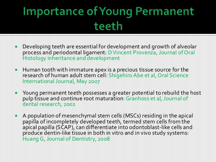 young permanent tooth Slide 3