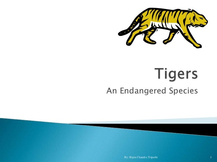 An Endangered Species    By: Bipin Chandra Tripathi   1