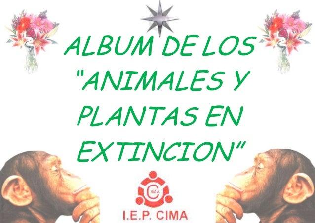 """ALBUM DE LOS""""ANIMALES YPLANTAS ENEXTINCION"""""""