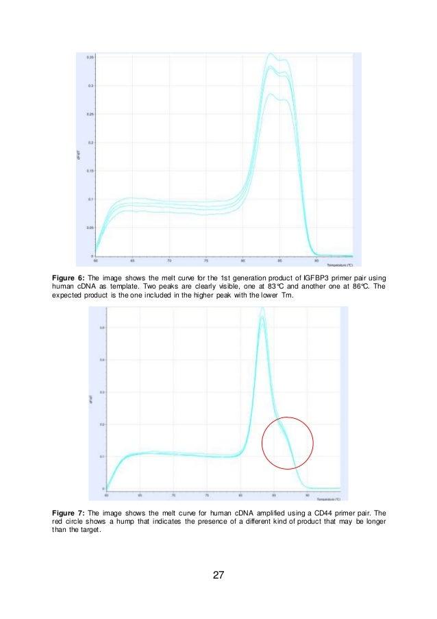 HD wallpapers edp manager resume sample aemobilewallpapersh.ga