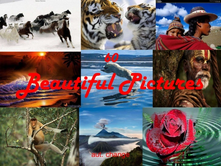 60 Beautiful Pictures aut. change