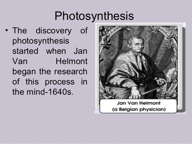 Photosynthesis • The discovery of photosynthesis started when Jan Van Helmont began the research of this process in the mi...