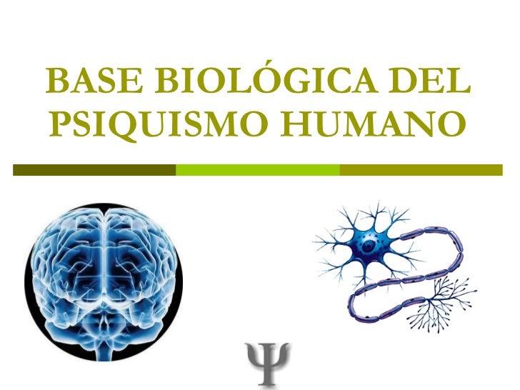 BASE BIOLÓGICA DEL PSIQUISMO HUMANO