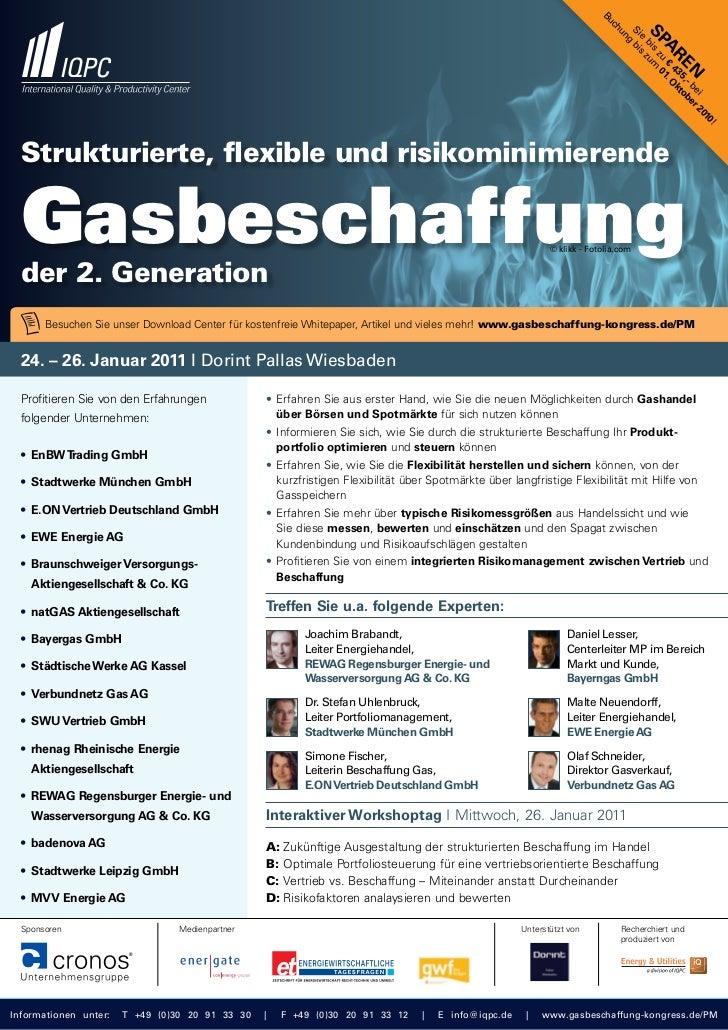 Strukturierte, flexible und risikominimierende Gasbeschaffung 2011