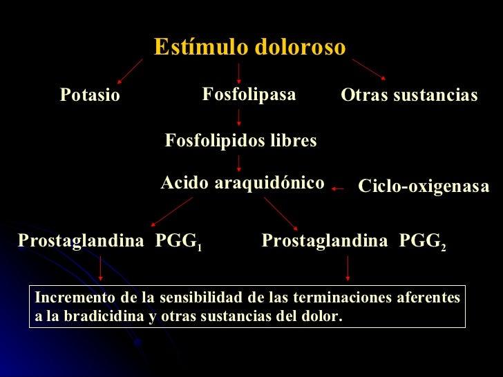 Estímulo doloroso Fosfolipasa Fosfolipidos libres Acido araquidónico Ciclo-oxigenasa Prostaglandina  PGG 1 Prostaglandina ...