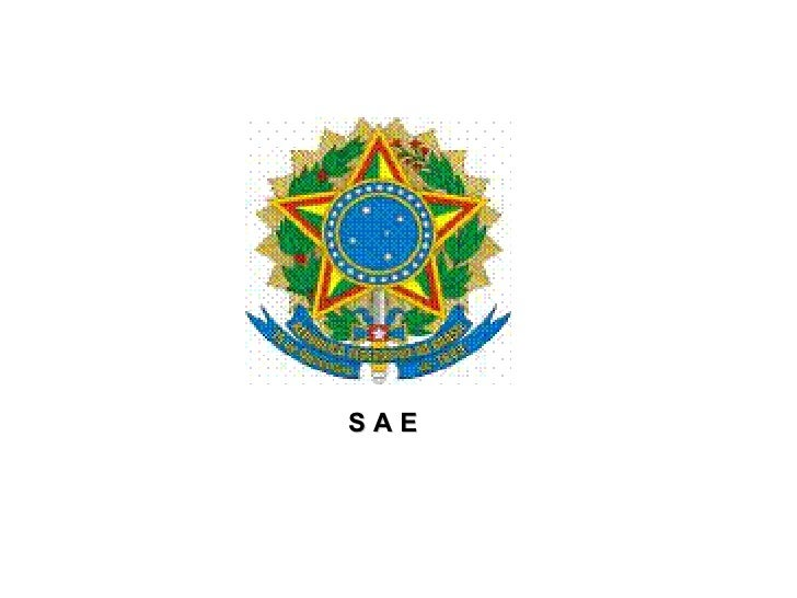 S A E