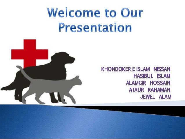  Build a Veterinary Charity Hospital.  Helping to the community.  Brand Expansion: Multinational.  Comfort & Security ...