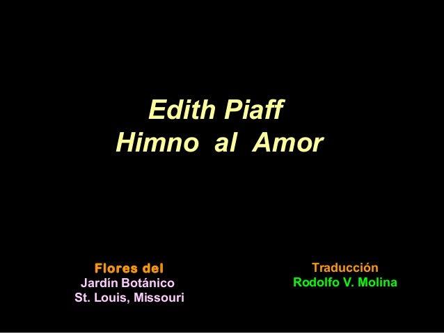 Flores del Jardín Botánico St. Louis, Missouri Edith Piaff Himno al Amor Traducción Rodolfo V. Molina