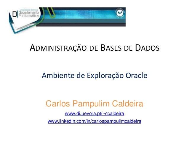 ADMINISTRAÇÃO DE BASES DE DADOS Ambiente de Exploração Oracle Carlos Pampulim Caldeira www.di.uevora.pt/~ccaldeira www.lin...