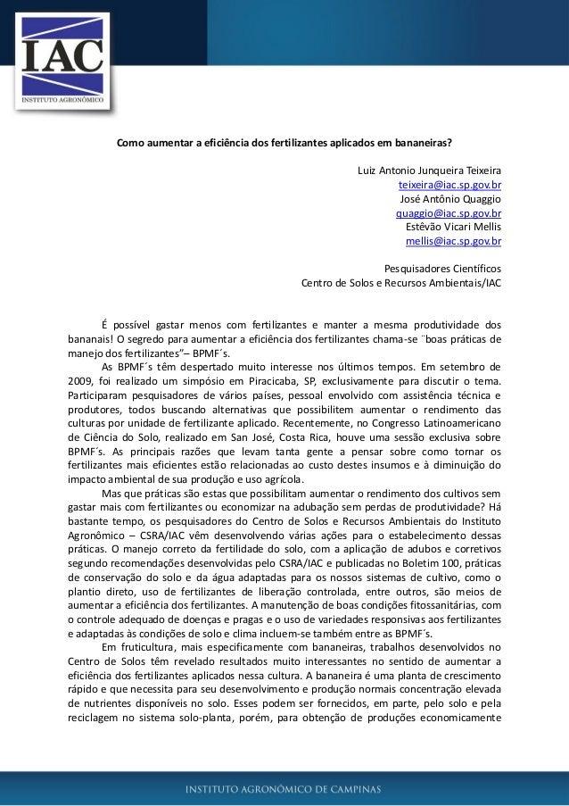 Como aumentar a eficiência dos fertilizantes aplicados em bananeiras? Luiz Antonio Junqueira Teixeira teixeira@iac.sp.gov....