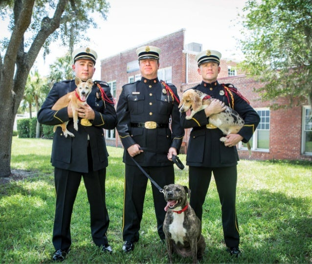 2016 firefighters amp rescued pets calendar   final