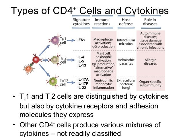 how to remember the different cytokines