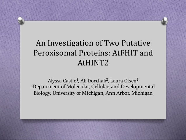 An Investigation of Two Putative Peroxisomal Proteins: AtFHIT and AtHINT2 Alyssa Castle1, Ali Dorchak2, Laura Olsen2 1Depa...