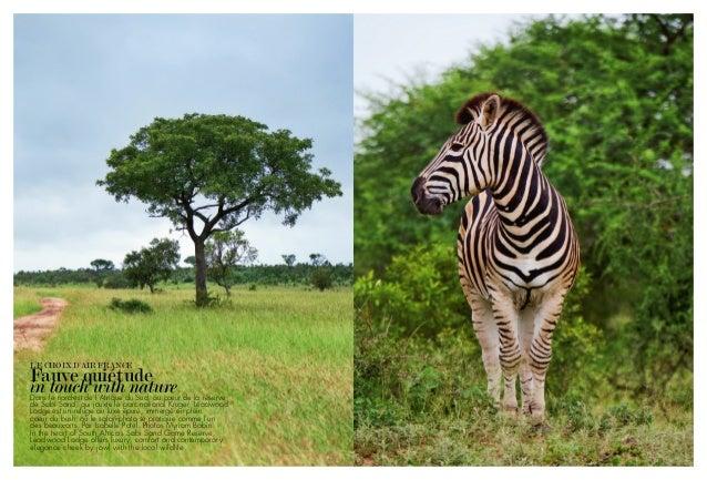 Le Choix d'air france Fauve quiétude in touch with natureDans le nord‑est de l'Afrique du Sud, au cœur de la réserve de Sa...