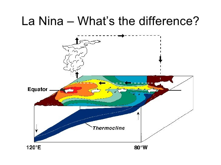 Normal     El Nino                But what actually                  causes these           fluctuations from the         ...