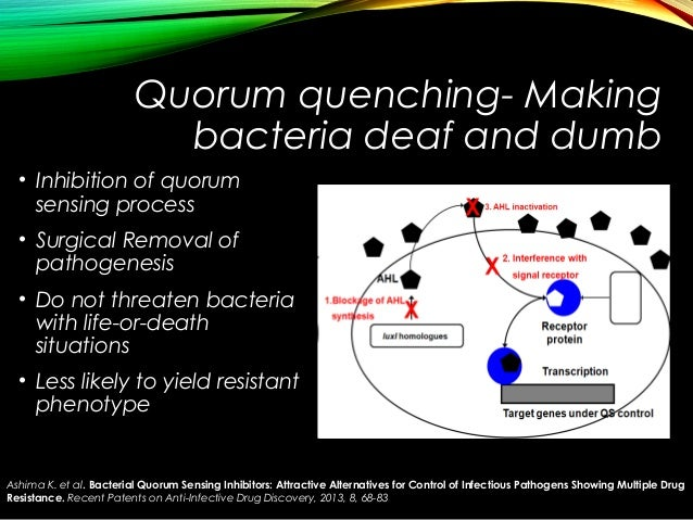 what is quorum sensing