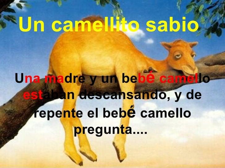 Un camellito sabio U na ma dre y un be b é  camel lo  est aban descansando, y de repente el beb é  camello pregunta....