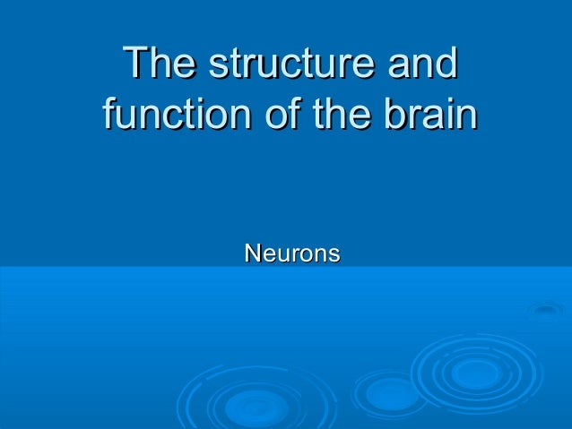 The structure and function of the brain Neurons