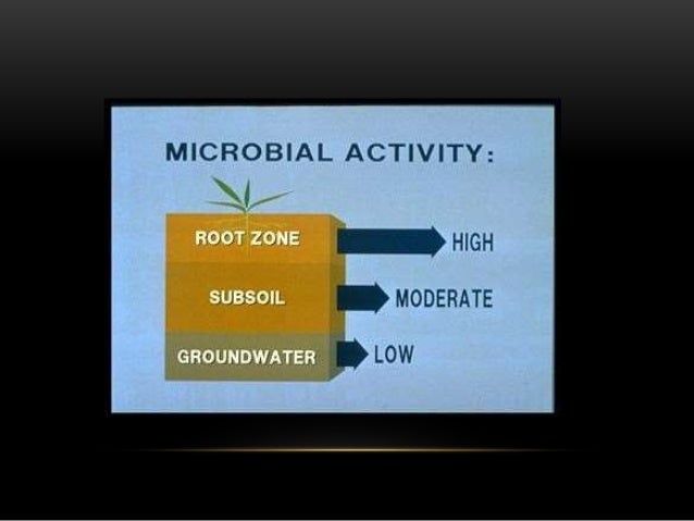 soil microbiology and microbial growth Between soil moisture and the growth and devel- opment of microorganisms, their physiological diversity and activity of soil enzymes soil moisture as a factor affecting the microbiological and biochemical activity of soil a borowik, j wyszkowska department of microbiology, university of warmia and mazury in olsztyn.