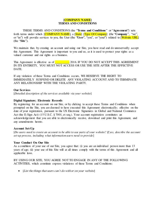 Terms and Conditions Sample