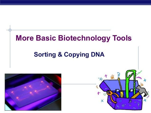 More Basic Biotechnology Tools             Sorting & Copying DNAAP Biology                           2007-2008