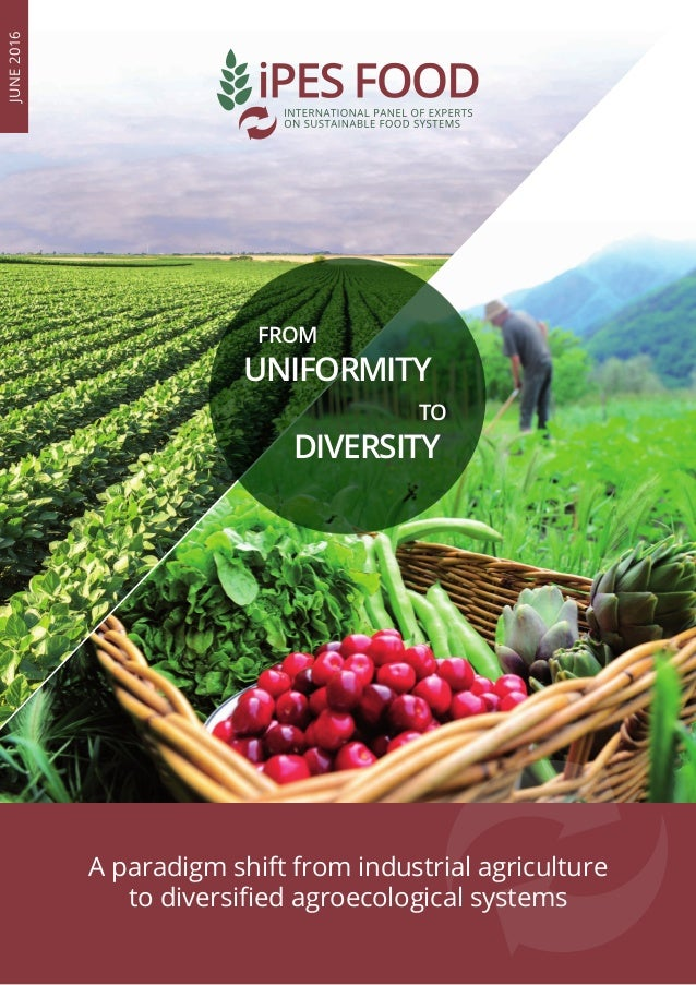 FROM UNIFORMITY TO DIVERSITY A paradigm shift from industrial agriculture to diversified agroecological systems JUNE2016