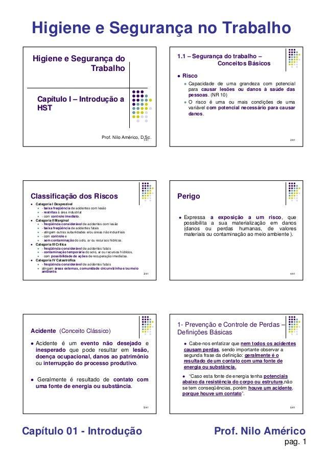 pag. 1 Higiene e Segurança no Trabalho Capítulo 01 - Introdução Prof. Nilo Américo 1/41 Higiene e Segurança do Trabalho Pr...