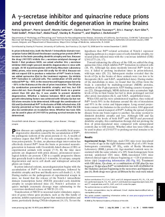 A ␥-secretase inhibitor and quinacrine reduce prions and prevent dendritic degeneration in murine brains Patricia Spilman*...