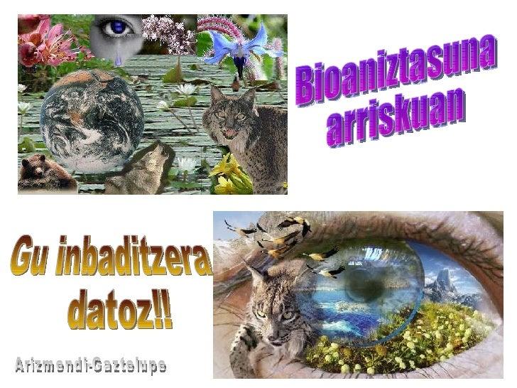 Bioaniztasuna  arriskuan Gu inbaditzera datoz!! Arizmendi-Gaztelupe