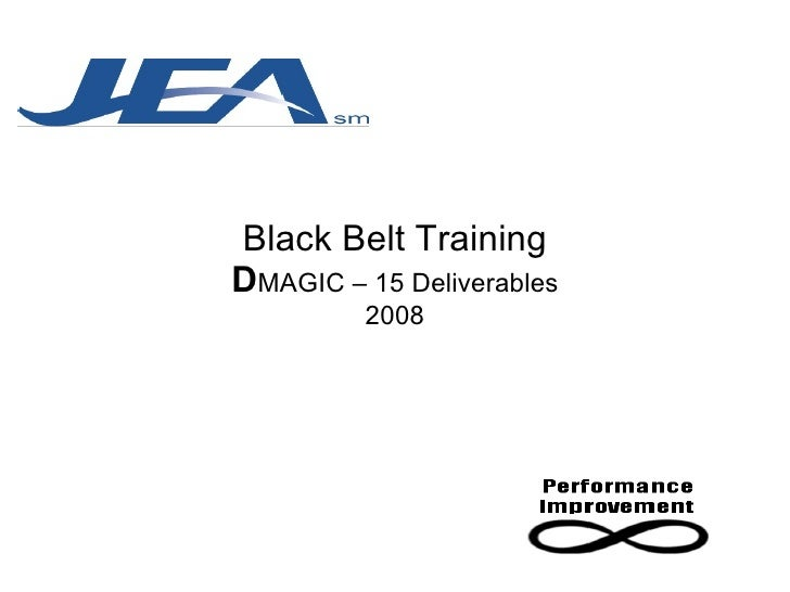 Black Belt Training D MAGIC – 15 Deliverables 2008