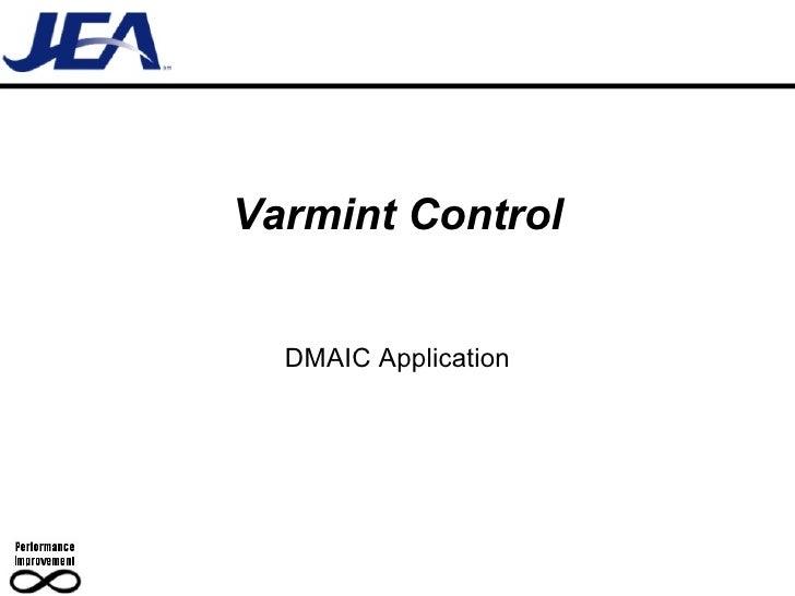 Varmint Control DMAIC Application