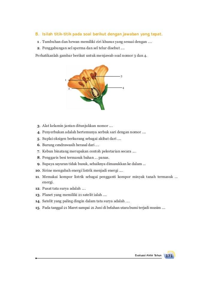 Contoh Soal Himpunan Untuk Sd Wilayah Id