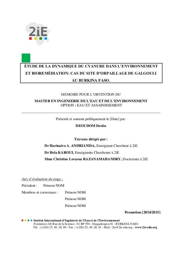 ÉTUDE DE LA DYNAMIQUE DU CYANURE DANS L'ENVIRONNEMENT ET BIOREMÉDIATION: CAS DU SITE D'ORPAILLAGE DE GALGOULI AU BURKINA F...